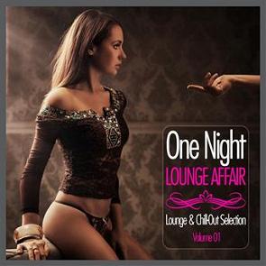 Combi one night affair download
