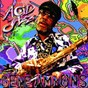 Album Legends of acid jazz de Gene Ammons