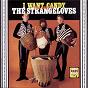 Album I want candy: the best of the strangeloves de The Strangeloves
