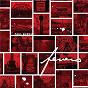 Album Fevers de Paul Burch