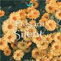 Album Pleasant Silence de NS Records