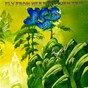 Album Fly From Here: Return Trip de Yes