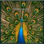 Album Expecting to fly de The Bluetones