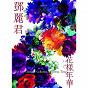 Album Hua yang nian hua de Teresa Teng