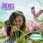 Album All in one de Bebel Gilberto