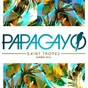 Compilation Papagayo saint tropez summer 2016 avec Javier Bollag / Kungs / Cookin On 3 Burners / Alaia / Gallo...