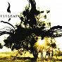 Album Flyleaf de Flyleaf