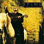 Album January stars de Sting