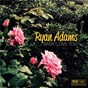 Album Baby i love you de Ryan Adams
