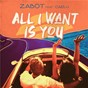 Album All I want is you de Zabot