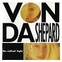 Album The Radical Light de Vonda Shepard