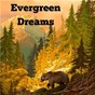 Album Evergreen dreams de The Rain Library