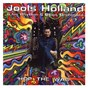 Album Hop the wag de Jools Holland