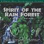 Album Spirit of the rainforest de David Arkenstone
