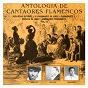 Compilation Antología de cantaores flamencos, vol. 13 avec Sernita de Jérez / Agujetas el Viejo / Félix de Utrera / El Garbanzo de Jerez / Salmonete...