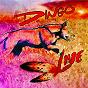 Album Live de Dingo