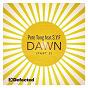 Album Dawn de Pete Tong