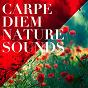 Album Carpe diem nature sounds de Soothing Music for Sleep Academy, Meister der Entspannung Und Meditation