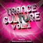 Compilation Trance culture vol.1 avec Haris / Michael Angelo, Jim / Ion Blue / Krivi / Ekstasis Project...