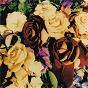 Album Honest de Dave Stewart / The Spiritual Cowboys