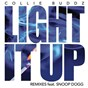Album Light it up (remix bundle) de Collie Buddz