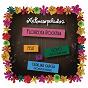 Album Florecita rockera (radio edit) de Aterciopelados