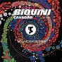 Album Biquini cavadão ao vivo: me leve sem destino de Biquini Cavadão
