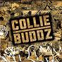 Album Collie buddz de Collie Buddz