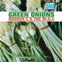 Album Green onions (stax remasters) de Booker T. & the Mg'S