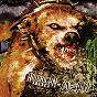 Album Mean de American Dog