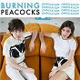 Album Ondulation de Burning Peacocks