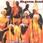 Album Experience (haïti konpa) de Magnum Band