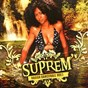 Compilation Suprem' ragga dancehall, vol. 1 avec T Matt / Mc Duc, Yron / Fowko / Alaza, Mc Jojo, T Matt, Soldat Tatane / Lokal...
