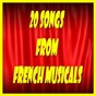 Compilation 20 songs from french musicals avec Bernard Plantey / Luis Mariano / Tino Rossi / Annie Cordy / Suzy Delair...