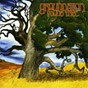 Album Young tree de Groundation