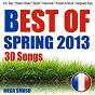 Album Best of Spring 2013 (Incl. Stay, Harlem Shake, Skyfall, Diamonds, Scream & Shout, Gangnam Style) de Mega Smash