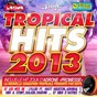 Compilation Tropical hits 2013 avec Apollon / Adrone / Lylloo / Matt Houston / Misié Sadik...