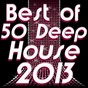 Compilation Best of 50 Deep House 2013 (Deep and Nu-Deep Electronic Experience) avec Enea Dj / Lady White / Derail / Minus / Jan Dham...