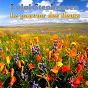 Album Le pouvoir des fleurs de Luigi Stephensen