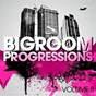Compilation Bigroom progressions, vol. 8 avec The Whiteliner / Futuristic Polar Bears, Steve Edwards / The Groove Ministers, Fran Ramirez, Mich Golden / Wize / Aggero...