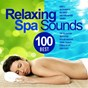 Album Best 100 relaxing spa sounds (gentle instrumental melodies and pure nature sounds for relaxation, meditation, healing massage, sound therapy, stress relief, good sleep) de Etherea