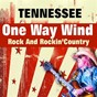 Album One way wind (rock and rockin'country) de Tennessee