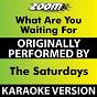 Album What are you waiting for (karaoke version) (originally performed by the saturdays) de Zoom Karaoke