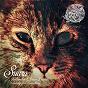 Album Looking for something de Kolombo / Dave Davis