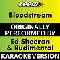 Album Bloodstream (Karaoke Version) (Originally Performed By Ed Sheeran & Rudimental) de Zoom Karaoke