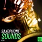 Compilation Saxophone sounds, vol. 1 avec Bernhard Brink / Erni Bieler / Fancy / Billy May / Coleman Hawkins...