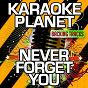 Album Never forget you (karaoke version) (originally performed by mnek & zara larsson) de A-Type Player
