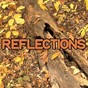 Album Reflections - tribute to jacob plant and example de Swift Hits