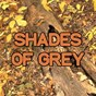 Album Shades of grey - tribute to oliver heldens & shaun frank and delaney jane de Swift Hits