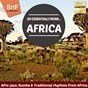Compilation 20 essentials from africa (afro-jazz, rumba & traditional rhythms from africa) avec Demon / Kante Facelli / Collet Philip / Trio Ny Antsaly / Keita Fodeba Et Son Orchestre...